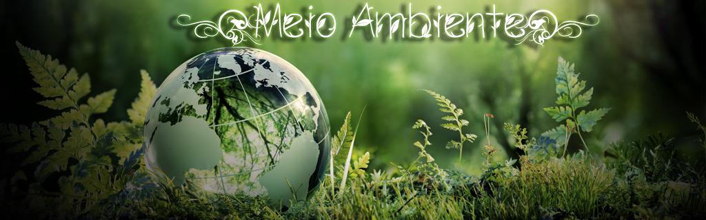 Imagem do curso - MEIO AMBIENTE